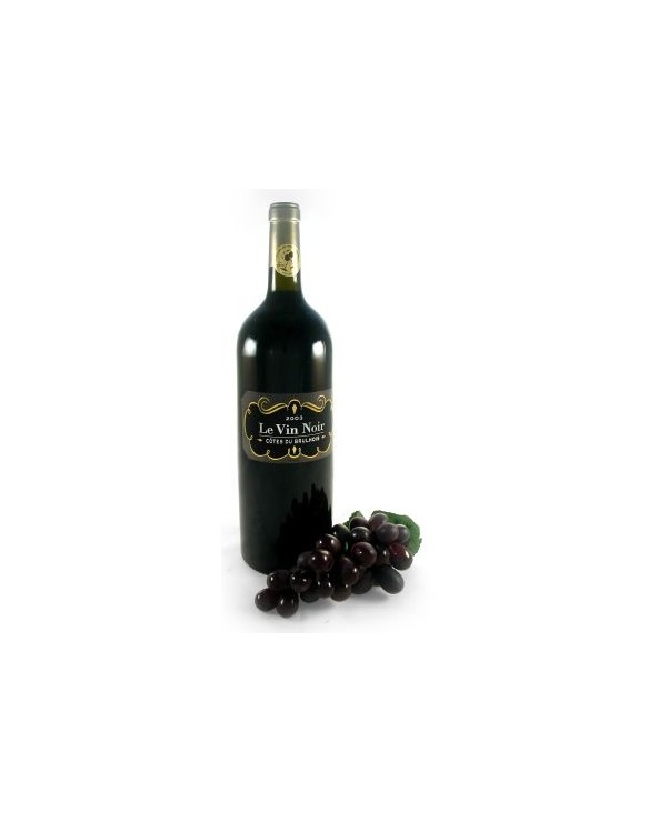 Vin noir Côtes du Brulhois 2003 1L5