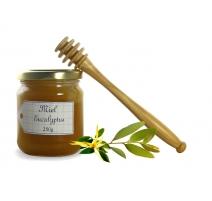 miel-eucalyptus